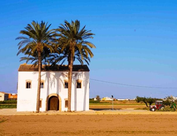Private bike tour to see the countryside of Valencia in Spain