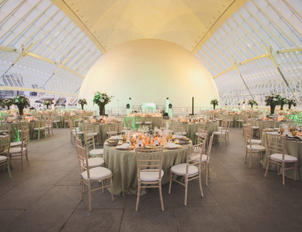 Beautiful gala dinner in the City of Arts and Sciences in Valencia in Spain