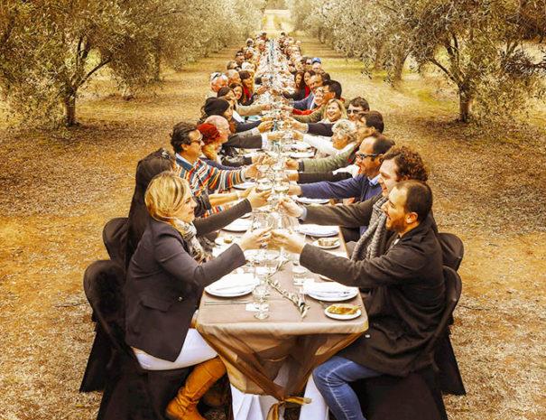 Déjeuner dans une oliveraie Majorque
