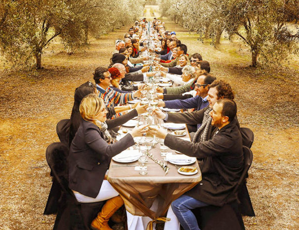 Olive grove team building experience in Mallorca