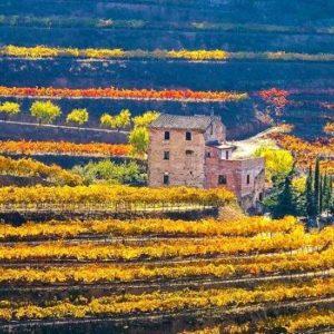 Catalonia wine tours in priorat region