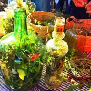 Workshop hierbas local drink Ibiza