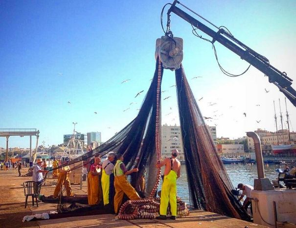 Barcelona Private tour Fisherman harbour