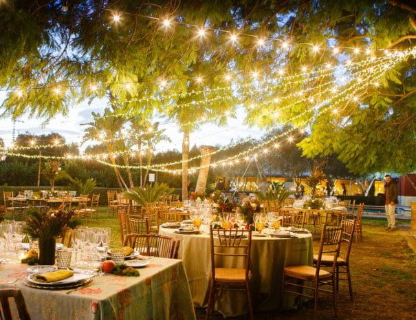 Garden party a Valence