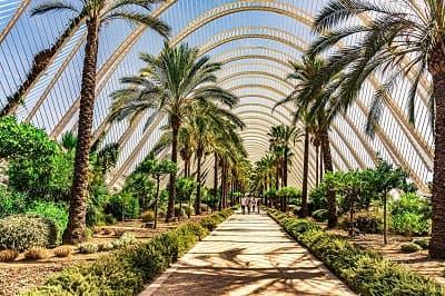 Parc cité des sciences Valence