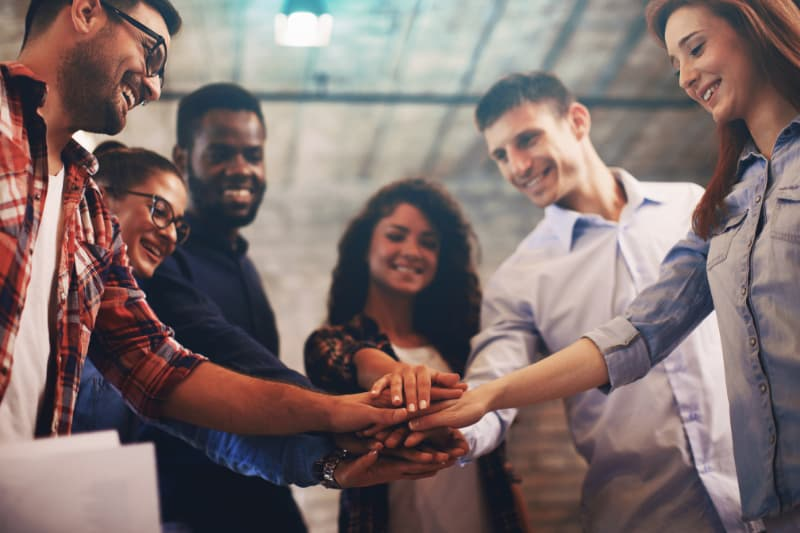 organise a team building for your collaborators