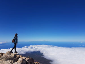 Découvrir Tenerife