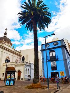 Travel agency Tenerife