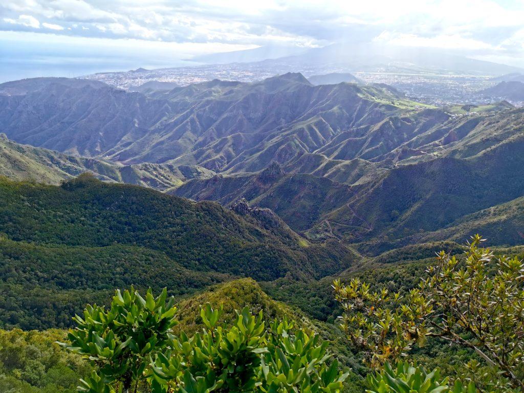 Parque Rural del Valle de Anaga, Tenerife