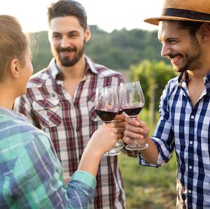 wines of tenerife